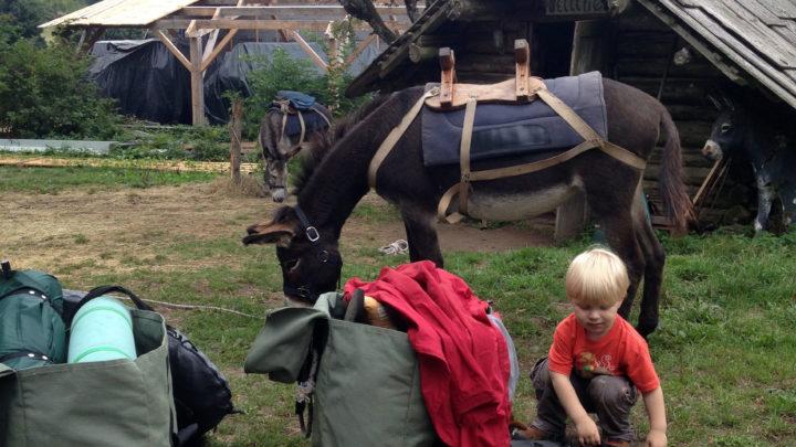 préparatif rando âne